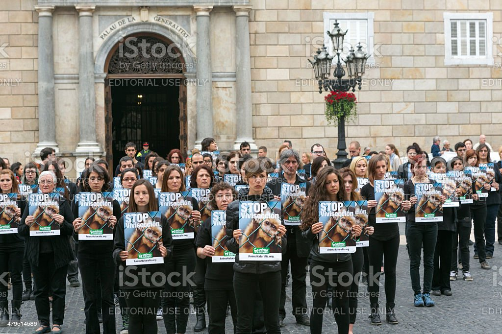 animal rights activist making demonstration in barcelona spain stock photo