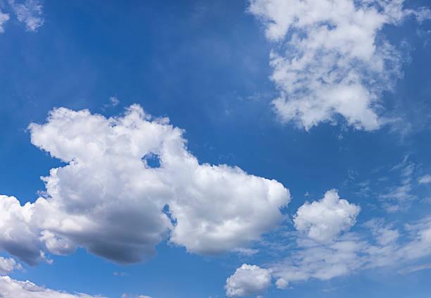 Nube con forma de animales. - foto de stock