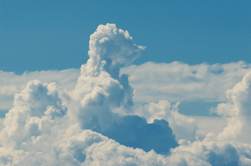 Soft rising animal shaped cloud resembling meerkat in a blue sky