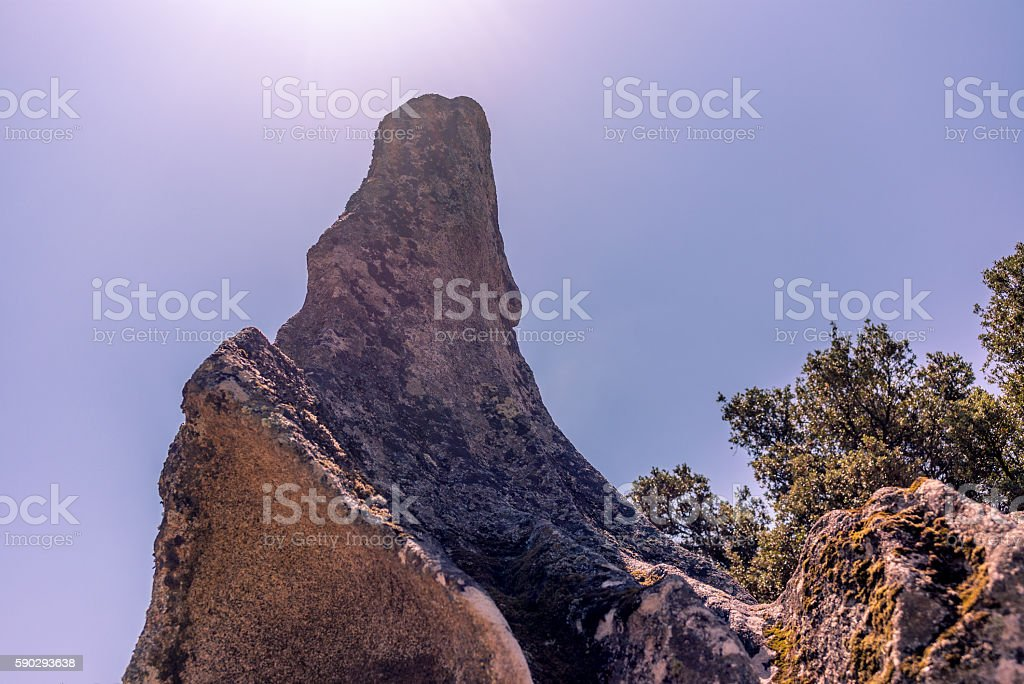 Animal shaped strange rock formations in Corsica - 2 royaltyfri bildbanksbilder