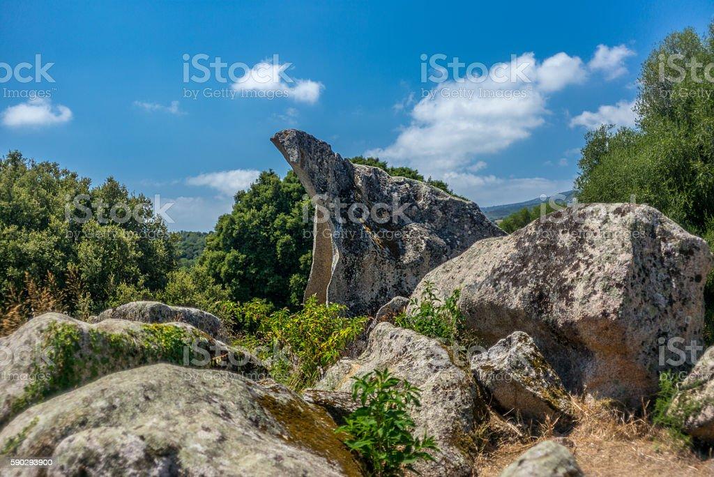 Animal shaped strange rock formations in Corsica - 3 royaltyfri bildbanksbilder