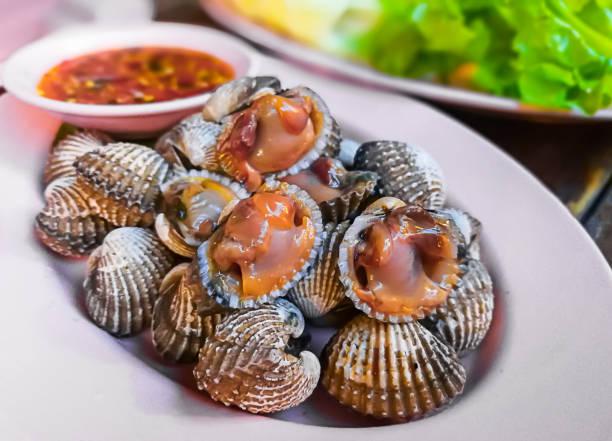 tierische schale, muschel, krustentier, meeresfrüchte, kaviar - herzmuschel stock-fotos und bilder