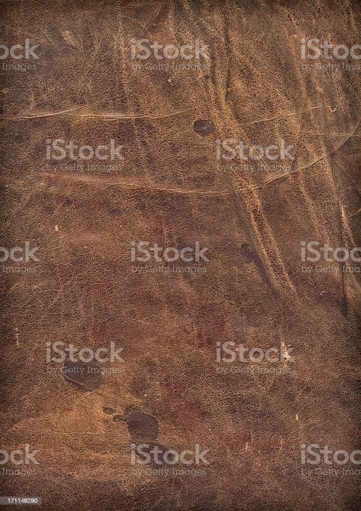 Animal Skin - Antique Veal Leather Hi-Res Vignette Grunge Texture stock photo