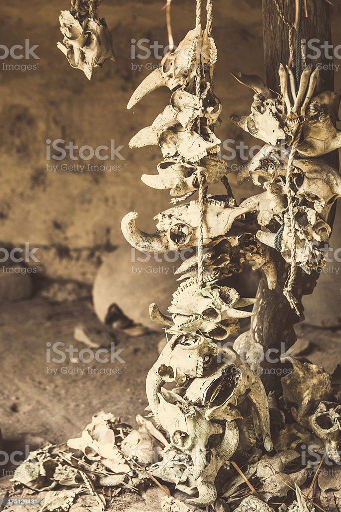 Animal skulls at voodoo place. royalty-free stock photo