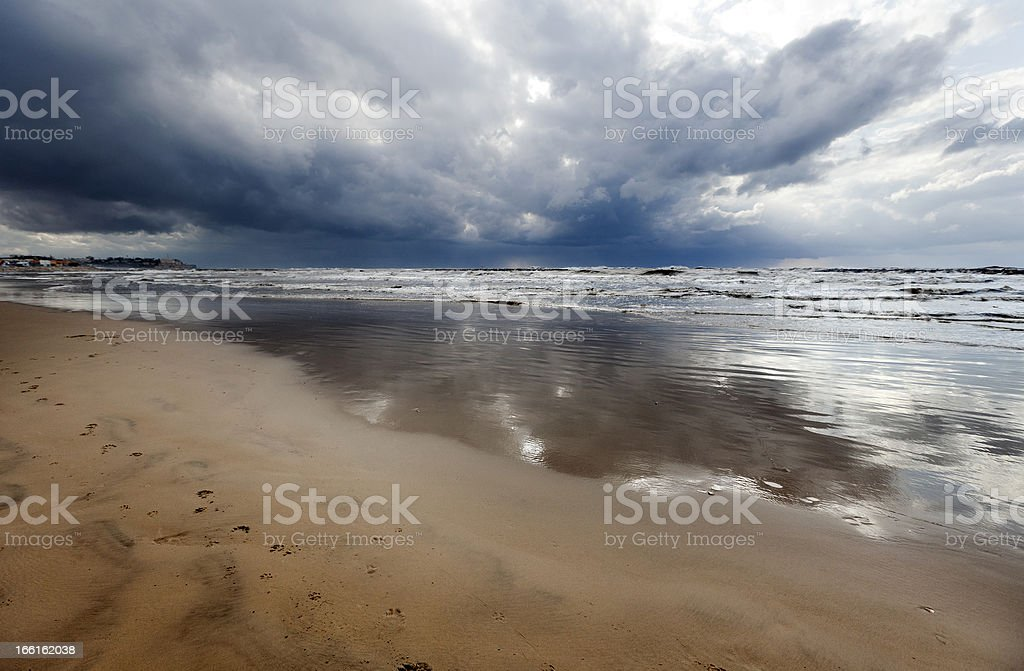 Animal Tracks on Wet Winter Beach royalty-free stock photo