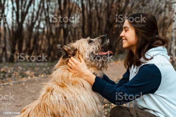 Animal training a volunteer girl walks with a dog from an animal a picture id1202612435?b=1&k=6&m=1202612435&s=612x612&h=yh9gvzrwbt7xpgizcdbouzau8wlt9ffwqmh3yu2fdva=