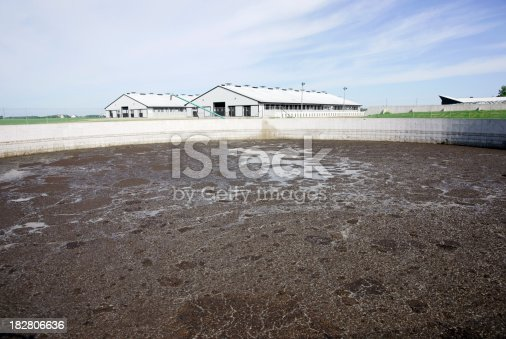 Animal waste lagoon on a modern dairy farm.
