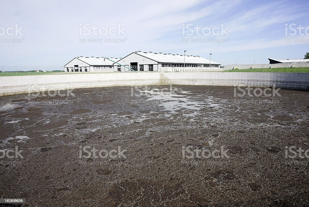 Animal waste lagoon on a modern dairy farm stock photo