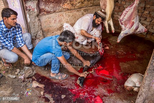 istock Animals being sacrificed to mark Eid Ul-Adha. 517220497