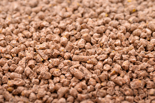 Background of animals compound feed pellets
