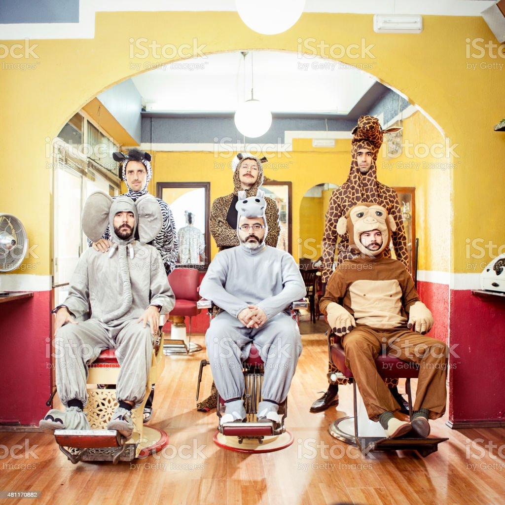 Animals in a Hair Salon stock photo