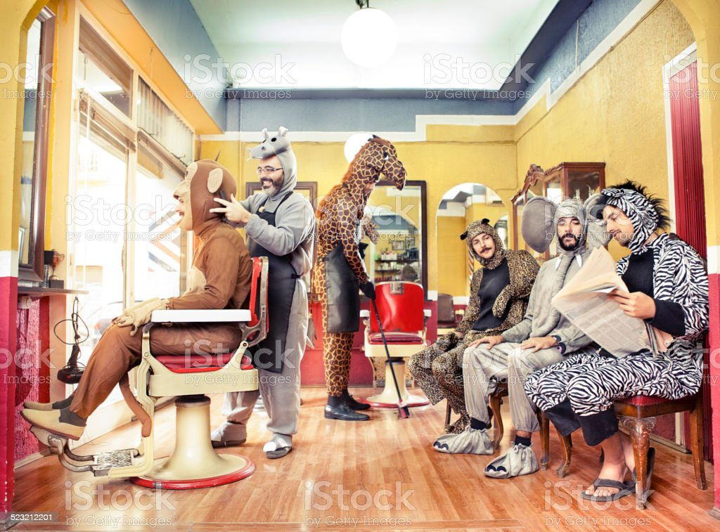 Animals in a Hair Salon stock photo