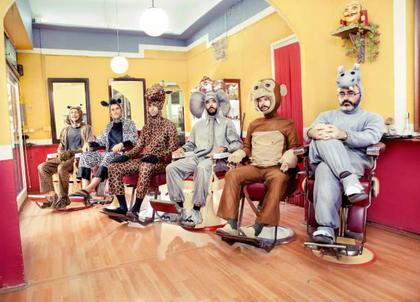 tiere in einem friseursalon - freund kostüme stock-fotos und bilder