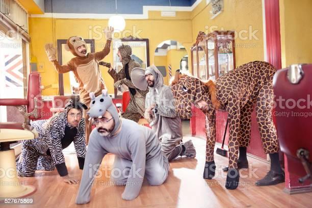 Animals in a hair salon picture id527675869?b=1&k=6&m=527675869&s=612x612&h=qsf4wxb0yf7gu7tpnz5xx8hjyxeymxw dcm12l8cvcc=