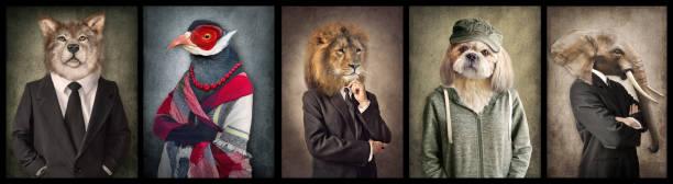 animals in clothes. concept graphic in vintage style. wolf, bird, lion, dog, elephant. - surrealistyczny zdjęcia i obrazy z banku zdjęć