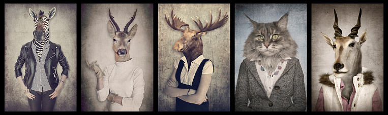 istock Animals in clothes. Concept graphic in vintage style. Zebra, deer, moose, cat, goat. 879223216