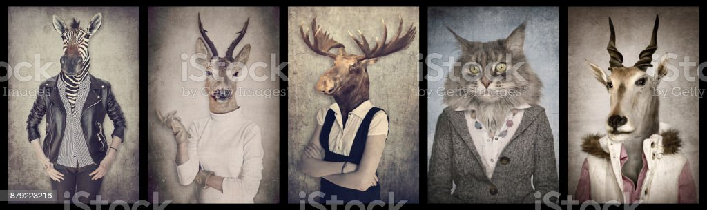Animals in clothes. Concept graphic in vintage style. Zebra, deer, moose, cat, goat. stock photo