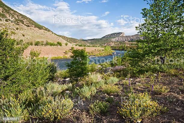 Animas River Stock Photo - Download Image Now