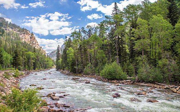 Animas River stock photo