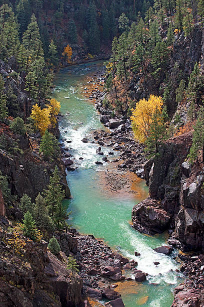 Animas Rivewr Gorge stock photo