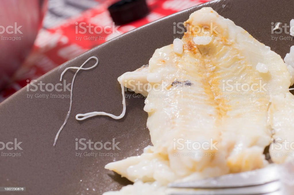 Anisakis worm in cooked Hake stock photo