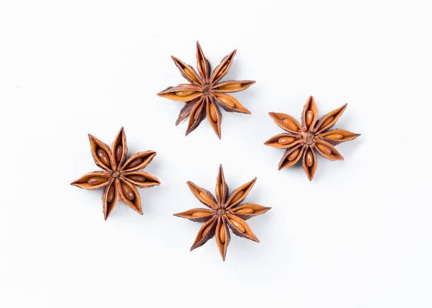 Anise star  on white background. Aniseed. True star anise close up. Badiane. Spices. Anise star  on white background. Aniseed. True star anise close up. Badiane. Spices. star anise on white stock pictures, royalty-free photos & images