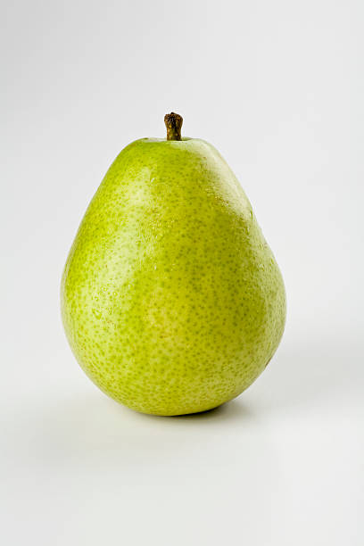 Anjou Pear stock photo