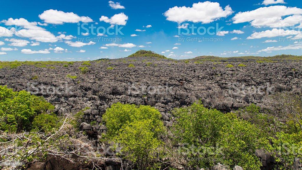 Ankarana Tsingy stones, northern Madagascar landmark stock photo