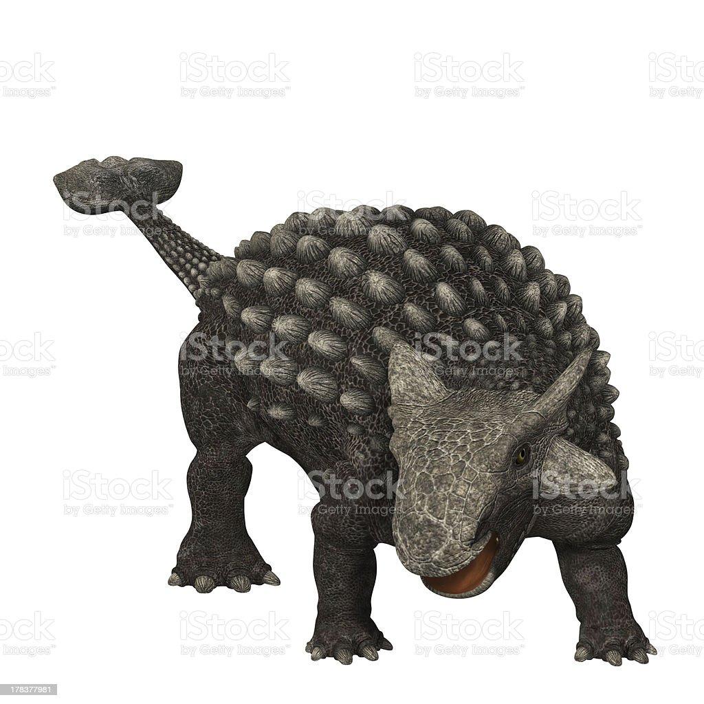 Anquilossauro 01 - foto de acervo