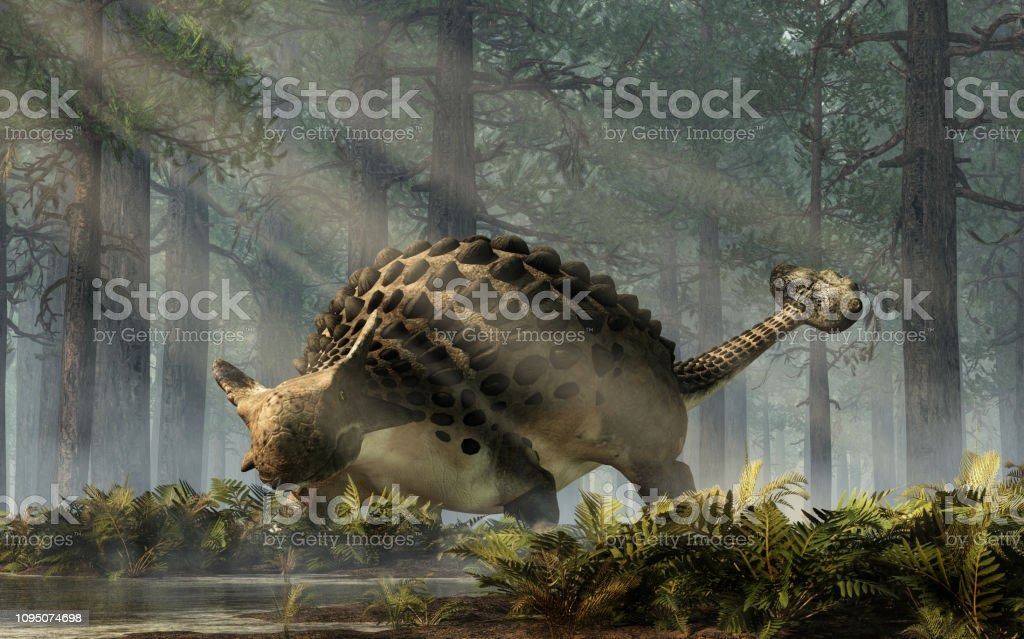 Ankylosaurus in a Forest Ankylosaurus, one of the most popular dinosaurs, was a cretaceous era ornithischian herbivore. The armored dino stands in a forest of fir trees with a floor of ferns. 3D Rendering. Animal Stock Photo