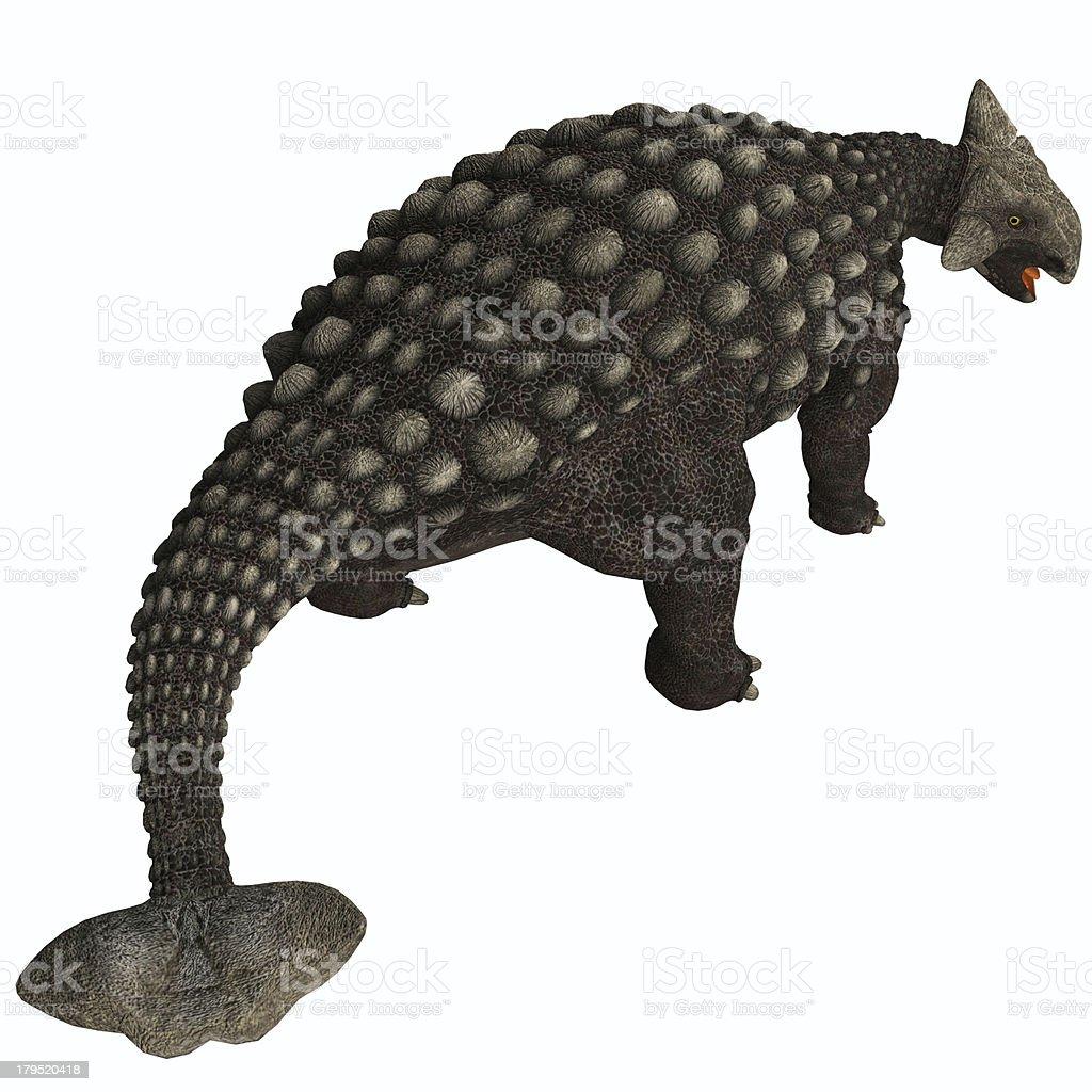 Ankylosaurus Isolated royalty-free stock photo
