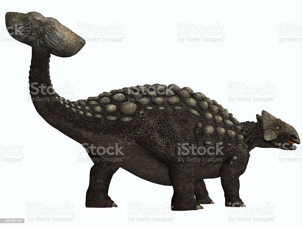 Anquilossauro no branco - foto de acervo