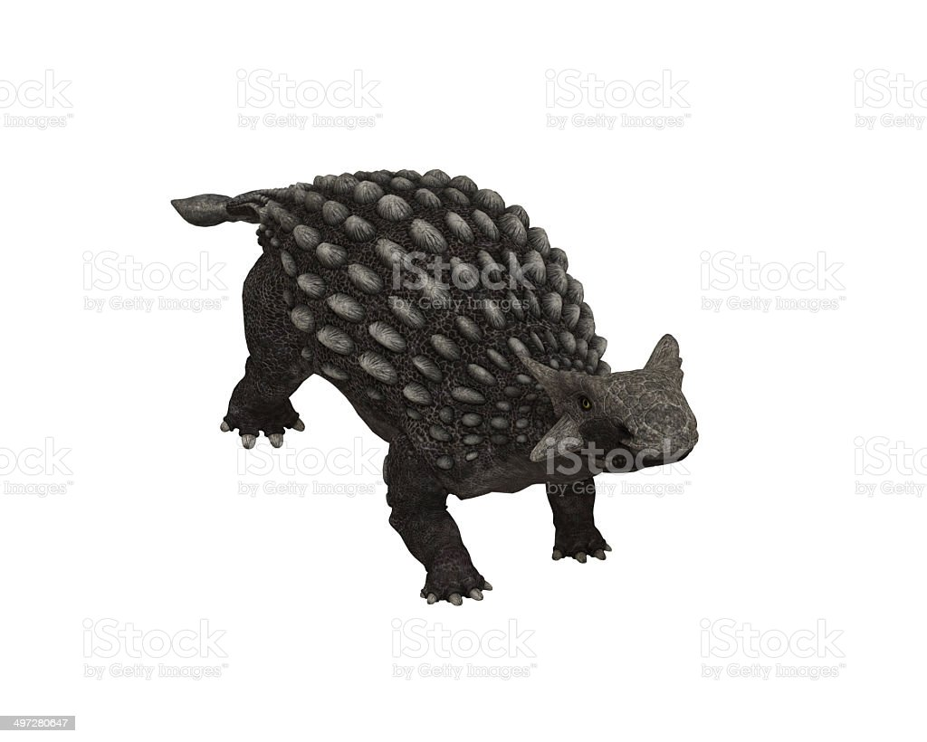 Anquilossauro - foto de acervo