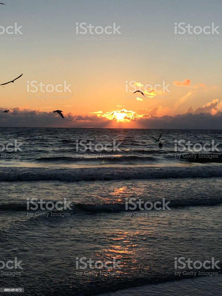 Anna Maria Island stock photo
