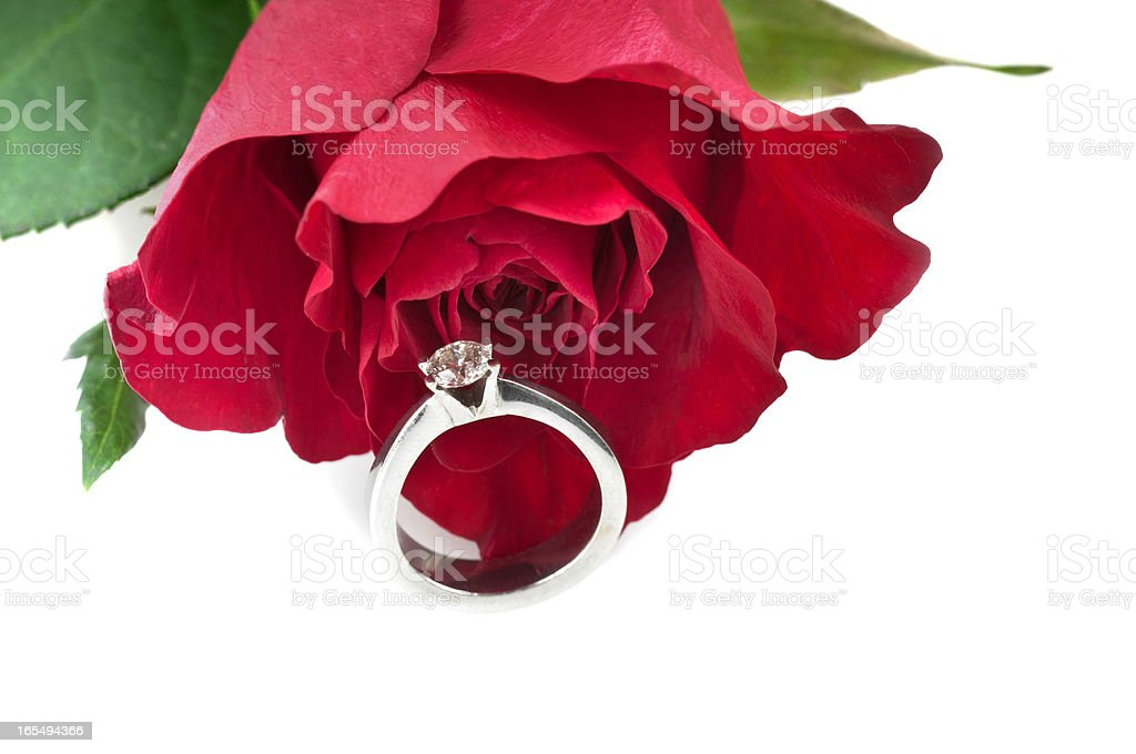 Anniversary Diamond Ring with Red Rose royalty-free stock photo