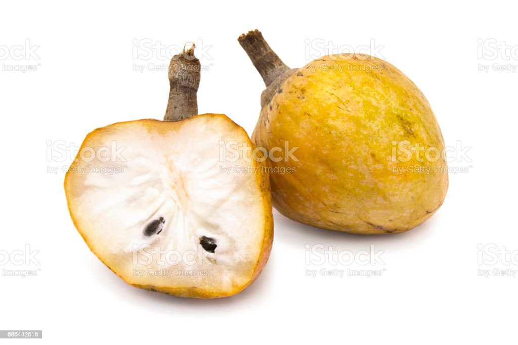 Annona scaly. Sugar apple fruit isolated on the white background. stock photo