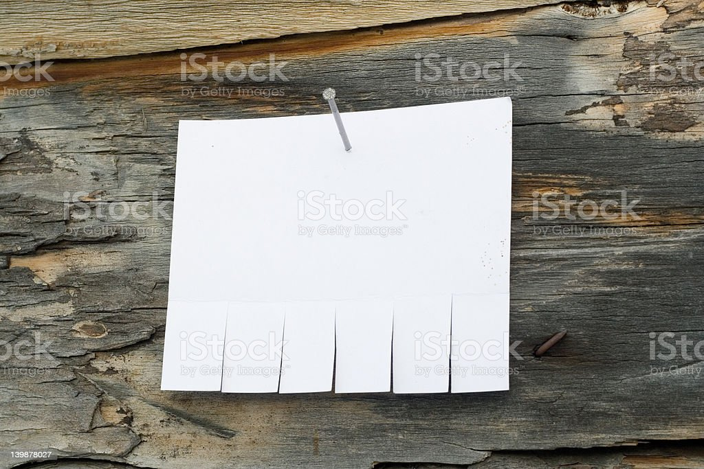 Announcement on tree royalty-free stock photo