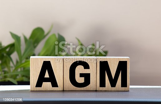 AGM Annual general meeting acronym on wooden cubes on blue backround. Business concept.