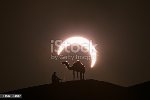 Annual solar eclipse in desert with a silhouette of a dromedary camel. Liwa desert, Abu Dhabi, United Arab Emirates.