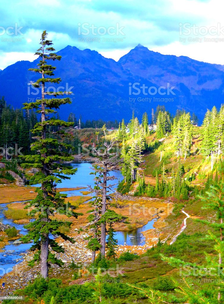 another nice view at wild goose trail,Mt Baker stock photo