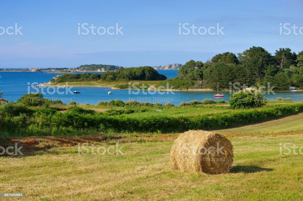 Anse de Pellinec coast  in Brittany, France stock photo