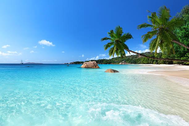 앙스 라치오 비치 프레슬린섬, 세이셜 - 세이셸 뉴스 사진 이미지