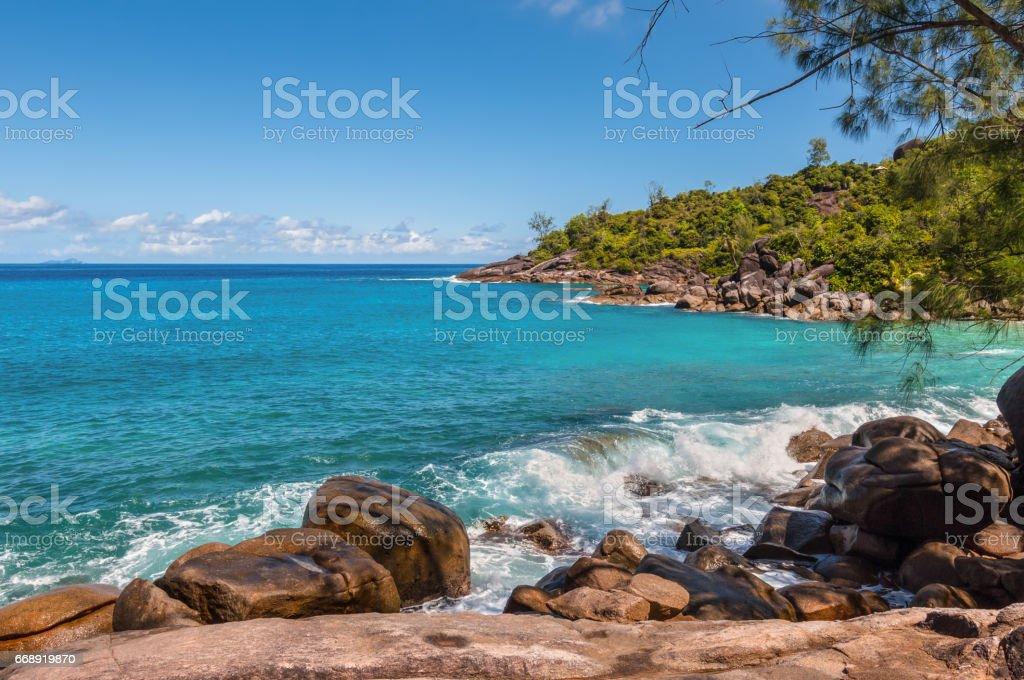 Anse Major Nature trail, Seychelles stock photo