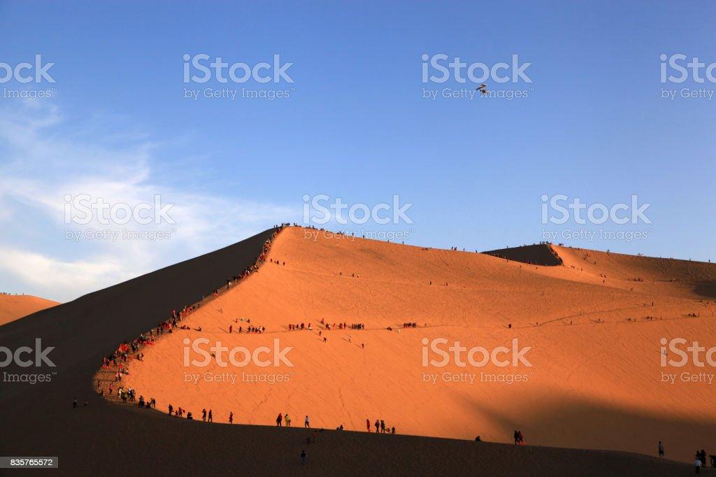 Hormiga o humanos en el desierto - foto de stock