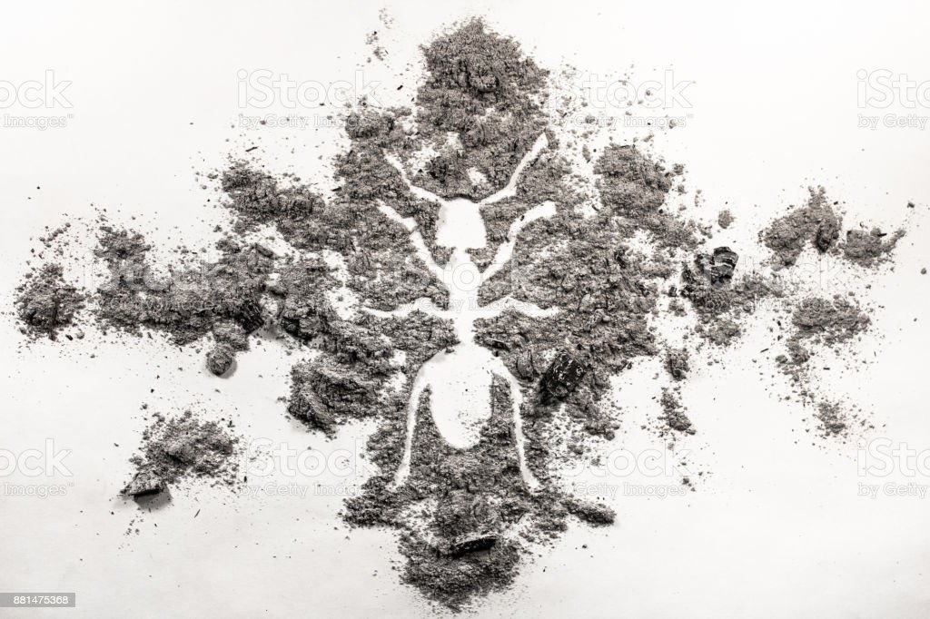 Ant or termite silhouette drawing made in ash stock photo