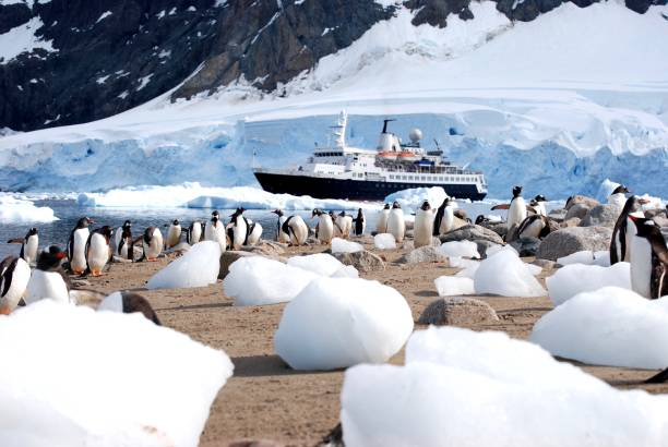 Antarctic Expedition stock photo