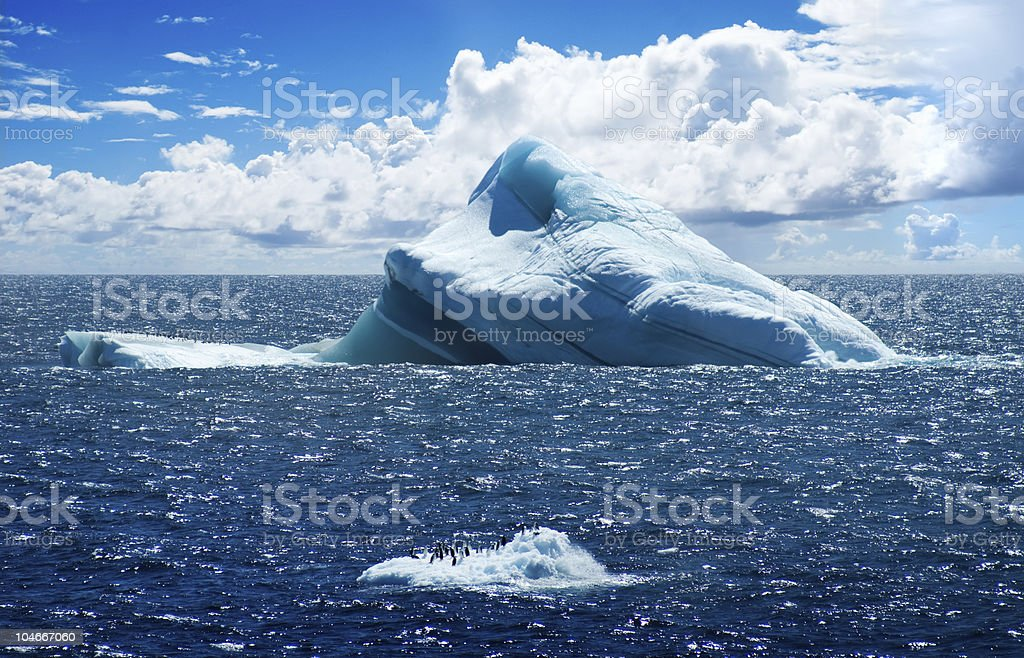 Antarctic ice island with real group of  penguins royalty-free stock photo