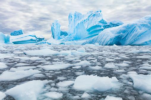 Antarctica beautiful landscape, blue icebergs