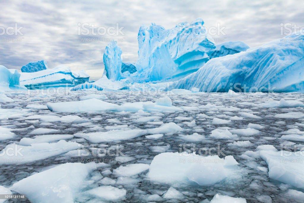 Antarctica beautiful landscape, blue icebergs stock photo