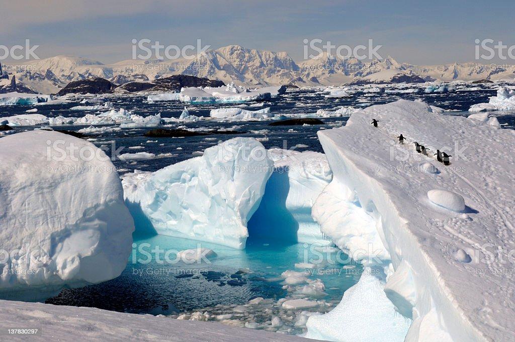 Antarctica圖像檔